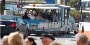 Servizio turistico di trasporto trenino lillipuziano