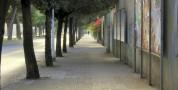 Derattizzazione nel viale Bonaria e via Pertusola