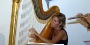 Concerto d'arpa celtica di Chiara Vittone